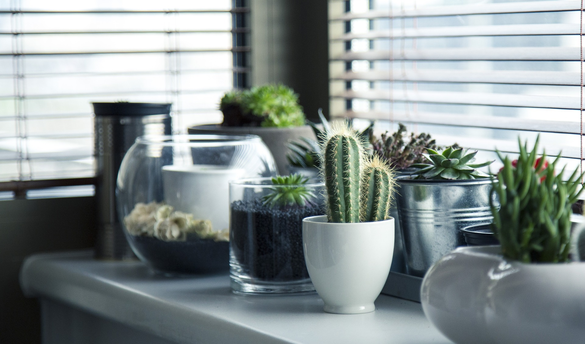 pots 716579 1920 - HomeBuyers Survey, Building or Snagging Survey. Which is right for you?